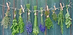 british-food-recipes-fresh-herbs-mint-rosemary-thyme