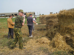 Действенная помощь  труженикам села