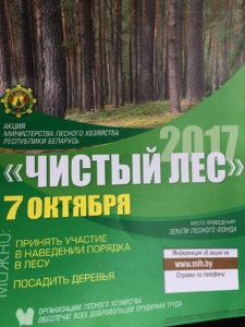 Приняли участие в акции «Чистый лес-2017»