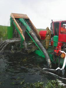 Ох, нелёгкая это работа – добывать янтарь из болота…